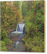 Hidden Falls In Autumn Wood Print