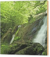 Hidden Falls - Shenandoah National Park. Wood Print