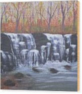 Hidden Falls Wood Print