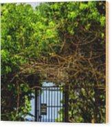 Hidden Gate Wood Print