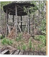 Hidden In The Woods Wood Print