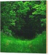 Hidden Meadow Wood Print