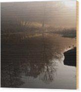 Hidden Reflections Wood Print