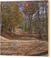 Hidden Road Wood Print