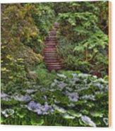 Hidden Stairs Wood Print