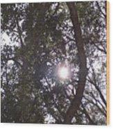 Hidden Sun Wood Print