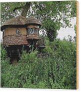 Hidden Treehouse Wood Print