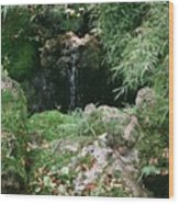 Hidden Waterfall Wood Print