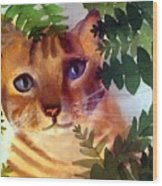 Hide And Seek Cat Wood Print