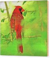 Hiding Behind The Leaves - Male Cardinal Art Wood Print