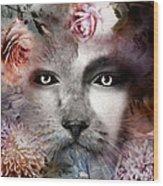 Hiding Catlady Wood Print
