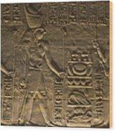 Hieroglyph At Edfu Wood Print by Darcy Michaelchuk