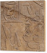 Hieroglyphs On Ancient Carving Wood Print by Jane Rix