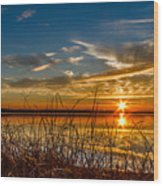 Higgins Lake Sunset With Saw Grass Wood Print