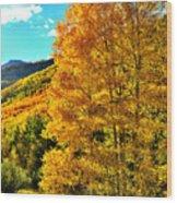 High Country Aspens Wood Print