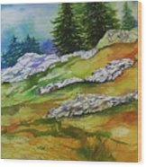 High Country Boulders Wood Print