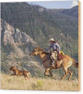 High Country Ride Wood Print