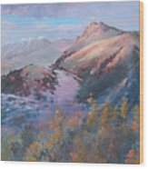 High Country Weather Wood Print