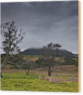 High Country Winter Wood Print