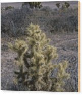 High Desert Country Wood Print