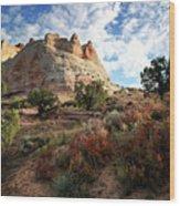 High Desert Paint Wood Print