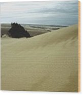 High Dunes 1 Wood Print by Eike Kistenmacher