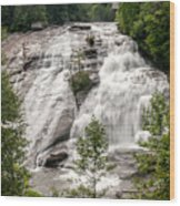 High Falls At Dupont Forest Wood Print