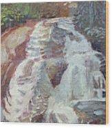 High Falls Dupont Forest Wood Print