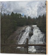 High Falls Dupont State Forest Wood Print