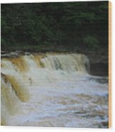 High Falls Of Cheat 13 Wood Print