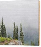 High Forest On Mt. Rainier Wood Print