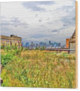High Line On The Hudson Wood Print
