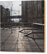High Line Park Wood Print