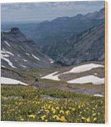 High Mountain Vista Wood Print