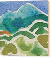 High Mountains And Meadows Wood Print by Annie Alexander