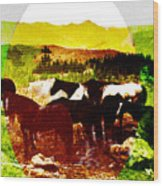 High Plains Horses Wood Print
