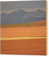High Plains Of Alberta With Rocky Mountains In Distance Wood Print