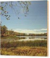 High Point Autumn Scenic Wood Print