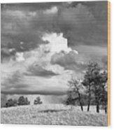 High Prairie Thunderheads Wood Print
