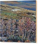 High Sierra Wood Print