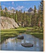 High Sierra Stream Wood Print
