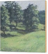 High Summer Pasture Wood Print