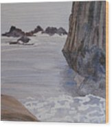High Tide At Seal Rock Wood Print