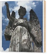 High To Heaven Wood Print