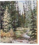 High Uintah Stream Wood Print