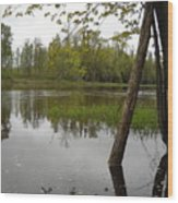 High Water Reflections Wood Print