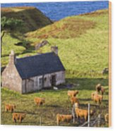 Highland Cottage With Highland Cattle Wood Print
