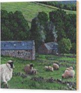 Highland Croft Wood Print