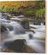 Highland River In Autumn Wood Print