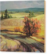 Highland Road Wood Print
